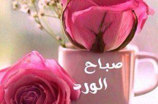 صوره احلى صور صباح الخير , صباحيات جميله وراقيه