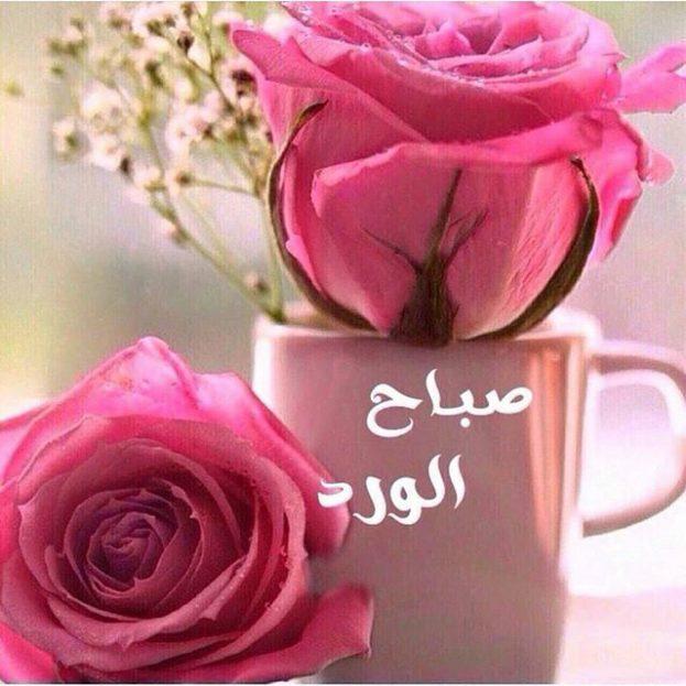 صور احلى صور صباح الخير , صباحيات جميله وراقيه