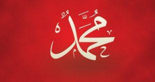 صور صور عن اسم محمد , اجمل الاشكال لاسم محمد فى صورة