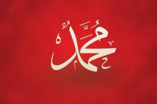 صورة صور عن اسم محمد , اجمل الاشكال لاسم محمد فى صورة