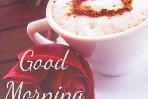 بالصور اجمل صباح للحبيب , عبارات مكتوبة تهدى للحبيب فى الصباح 2749 10