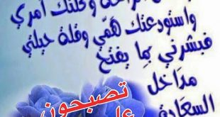 صوره مسجات تصبحون على خير اسلامية , عبارات دينية جميلة للنوم