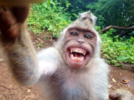 بالصور صوره مضحكه , ضحكة من قلوب البشر 2761 6