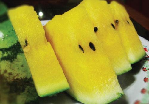 صور بطيخ اصفر , مذاق البطيخ الاصفر وطعمة اللذيذ