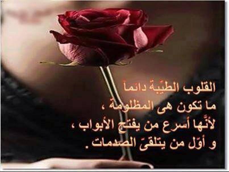 بالصور كلام جميل فيس بوك , اجمل توبيكات فيس بوك 2776 8