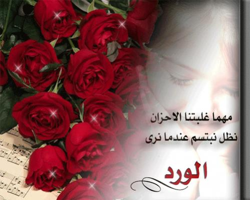 بالصور عبارات عن الورد , اجمل ما قيل عن الورود 2779 3