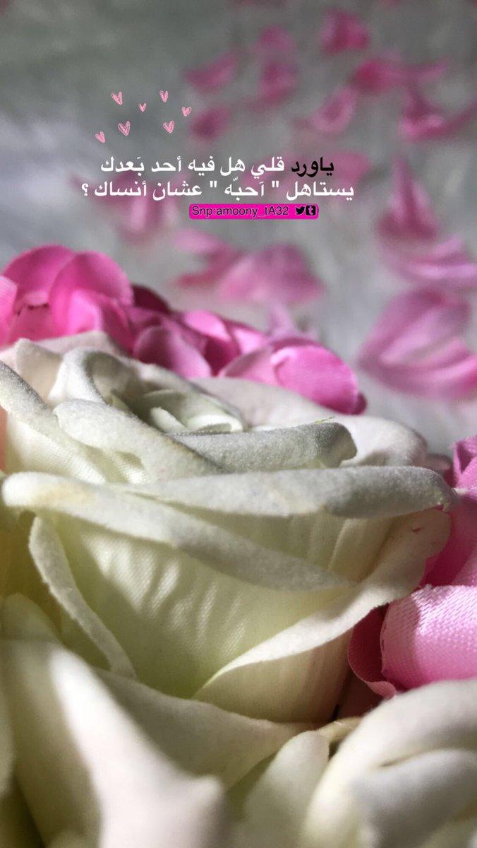 بالصور عبارات عن الورد , اجمل ما قيل عن الورود 2779 4