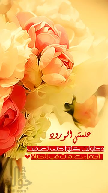 بالصور عبارات عن الورد , اجمل ما قيل عن الورود 2779 6