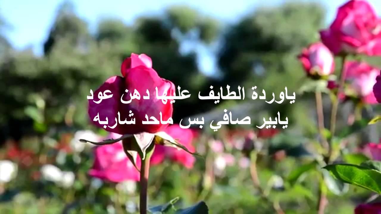 بالصور عبارات عن الورد , اجمل ما قيل عن الورود 2779 8