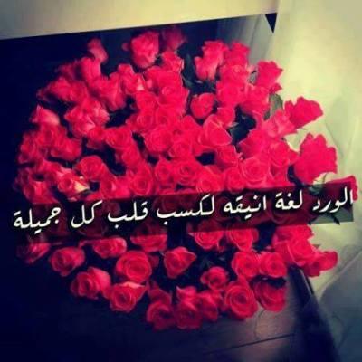 بالصور عبارات عن الورد , اجمل ما قيل عن الورود 2779