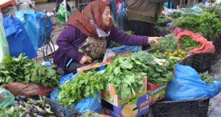 صور نسوان الشارع , نساء يعملن في كد حتى لو في الشارع