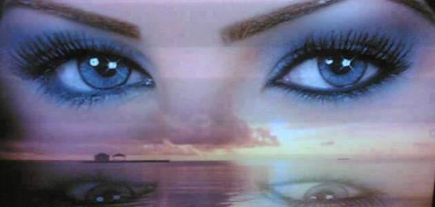 بالصور كلام عن العيون , افضل لغة هي لغة العيون 3285 6