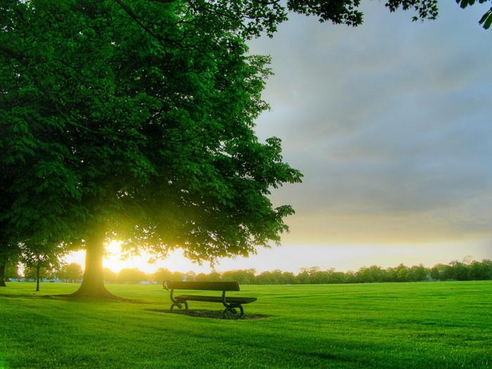 بالصور اجمل صباح , صباح متالق بجمال لا ينتهي 3312 14