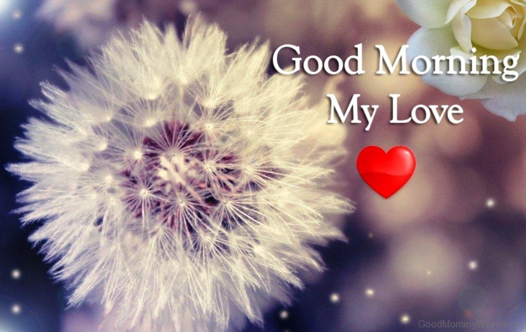 بالصور كلمات صباحية للحبيب , صباح الخير حبيبي 3378 7