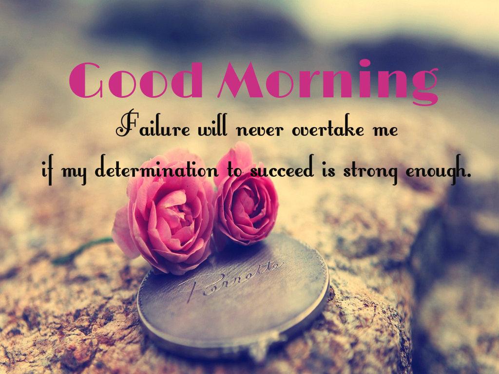 بالصور كلمات صباحية للحبيب , صباح الخير حبيبي 3378 8