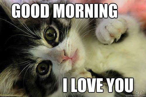 بالصور صباح الخير مضحكة , تحية الصباح بطريقة مختلفة! 3439 14