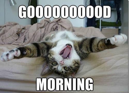 بالصور صباح الخير مضحكة , تحية الصباح بطريقة مختلفة! 3439 4