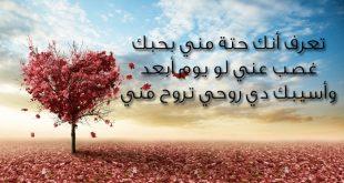 بالصور رسائل الحب والغرام , كلمات جميلة عن الحب والغرام 3555 11 310x165