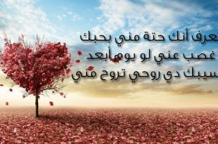 صور رسائل الحب والغرام , كلمات جميلة عن الحب والغرام