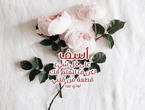 بالصور رسالة اعتذار للحبيب الزعلان , مسجات صلح لكل حبيب 859 1
