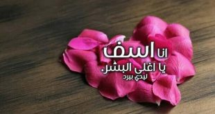 صورة رسالة اعتذار للحبيب الزعلان , مسجات صلح لكل حبيب