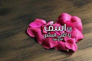 بالصور رسالة اعتذار للحبيب الزعلان , مسجات صلح لكل حبيب 859 310x205