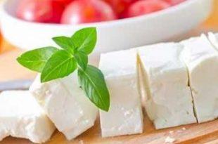 صور فوائد الجبنة البيضاء , 8 فوائد صحية للجبنه