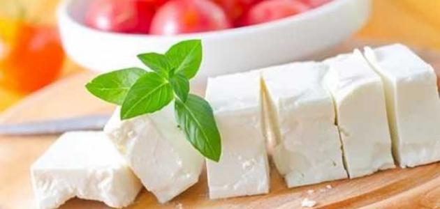 صورة فوائد الجبنة البيضاء , 8 فوائد صحية للجبنه