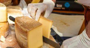 صور كيفية صنع الجبن , طريقة صنع الجبن
