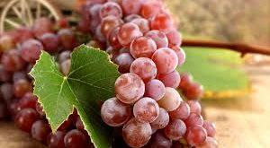 صورة فوائد العنب الاحمر , عالج السرطان بالعنب
