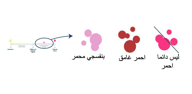 صورة الفرق بين دم الدورة ودم الحمل , للنساء فقط ممنوع الرجال