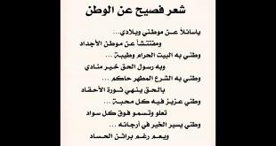 صورة شعر عن مصر ،وطنى وصباى وأحلامى