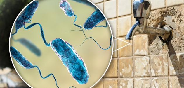 صورة مرض الكوليرا , اخطر مرض مميت