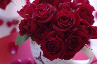 صورة كلمات شكر وثناء لشخص عزيز, ما اجمل ان تقول بعض هذه الكلمات الى احبائك