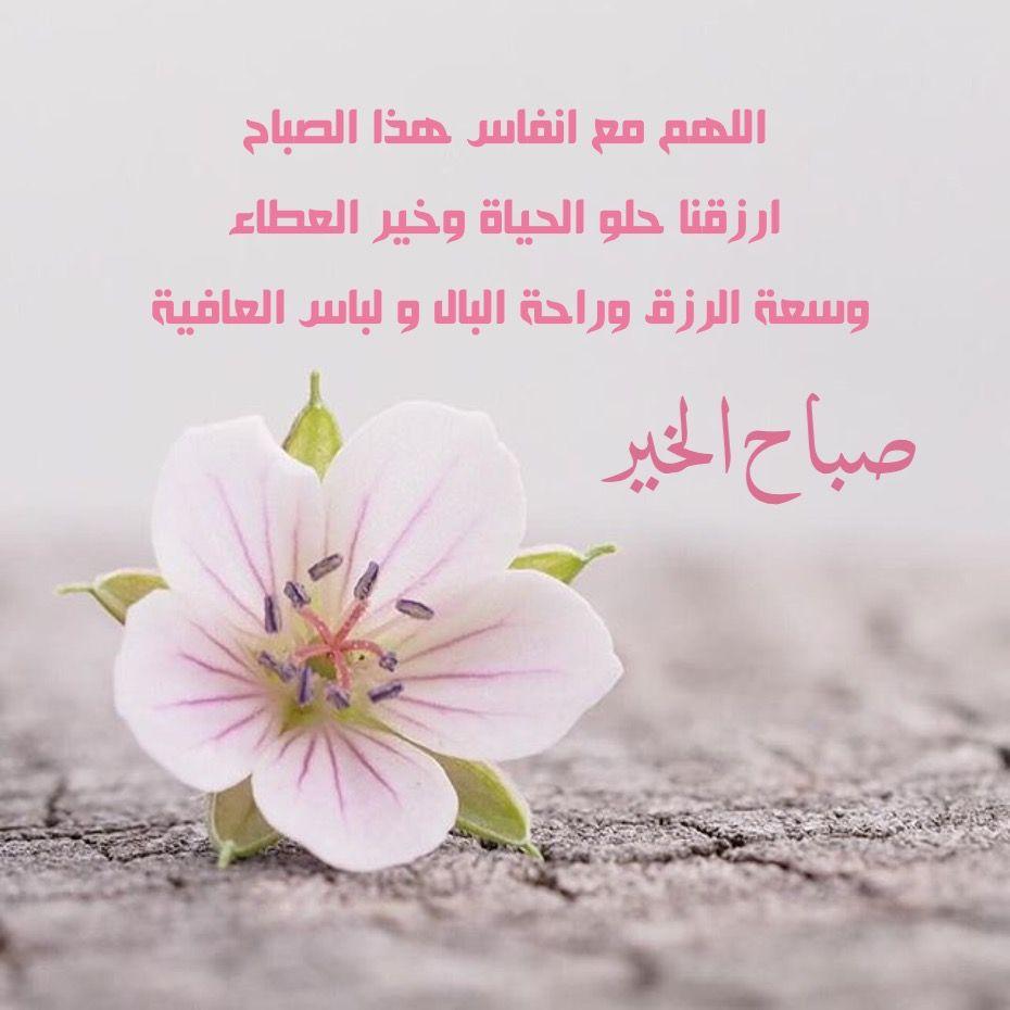 صورة حبيبي صباح الخير كلمات, احلى صباح عليك 725 5