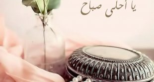 صورة صباح مشرق مع احلى حبيب ,صباح النور حبيبتي