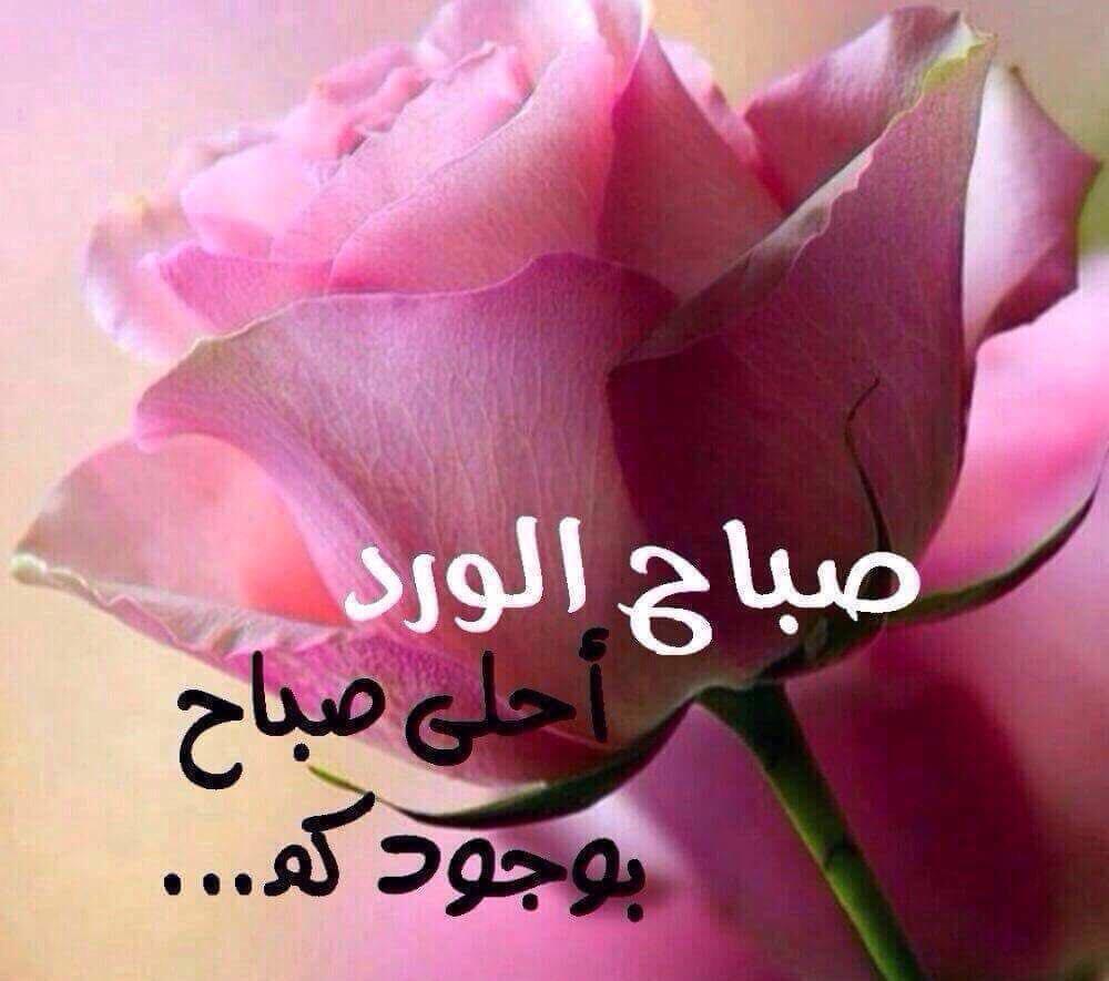 صورة صباح مشرق مع احلى حبيب ,صباح النور حبيبتي 2191 5