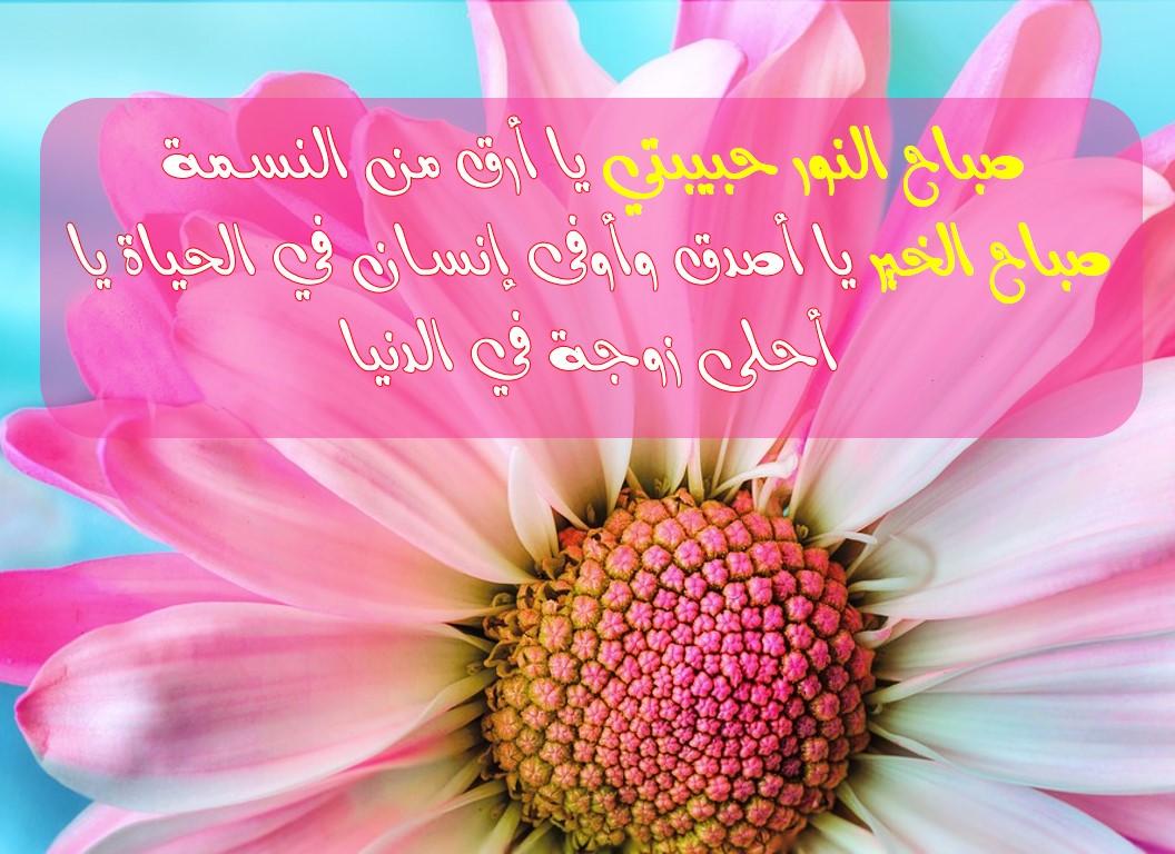 صورة احلى صباح على احلة ملكة ,صباح الخير يا حبيبتي