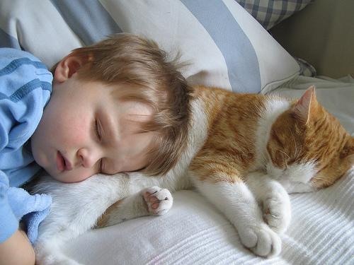 صورة علاج الاحتقان للاطفال 12472 9