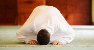 صورة الصلاة في المنام لغير القبلة 12683 1 310x165