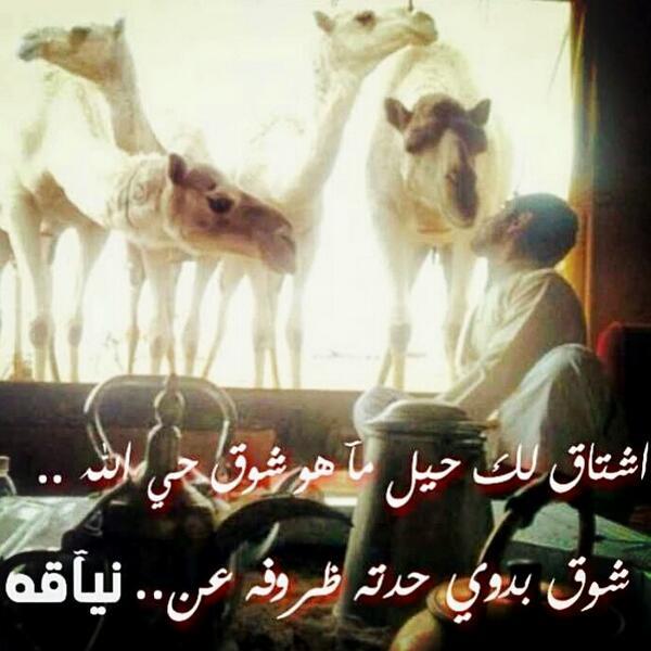 صورة قصيدة وطنية سعودية 13174 1