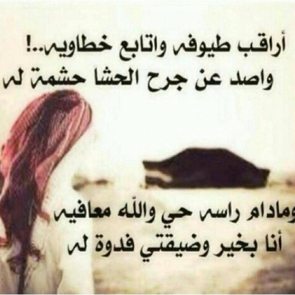 صورة قصيدة وطنية سعودية 13174